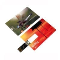 Card Wafer 2 USB Flash Drives