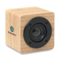 3W Wooden Speakers
